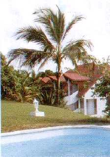 Bungalows with swiming pool